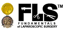 Fundamentals of Lapropscopic Surgery